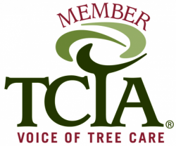 TCIA Member - Keil Tree Experts