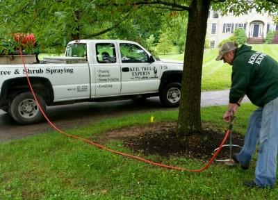 Fertilizing Your Lawn - Keil Tree