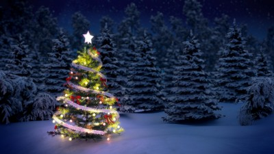 Outdoor Tree Lights - Keil Tree