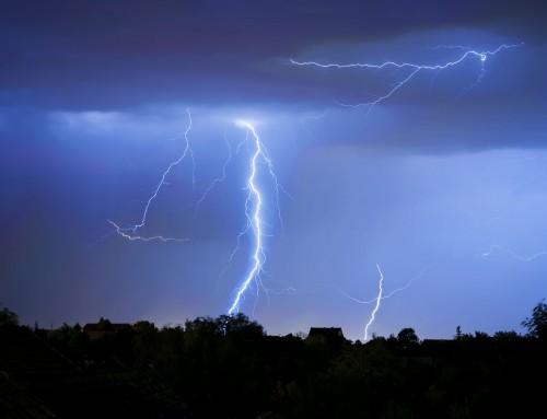 Why Lightning Strikes Trees