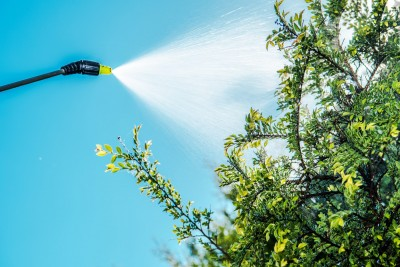 tree service in Lutherville MD -- Keil Tree Experts